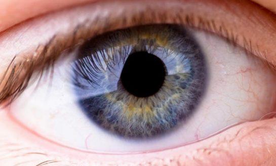 Medio millón de personas en España están en riesgo de desarrollar glaucoma