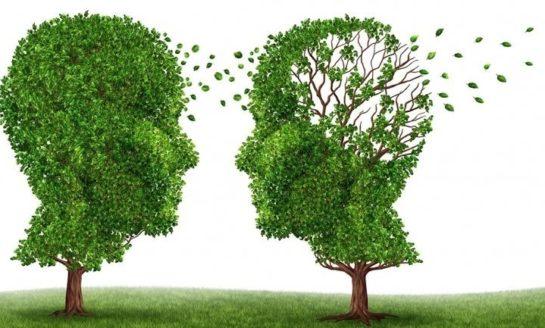 Conferencia 'Hábitos de vida saludables y demencias, qué podemos hacer?'