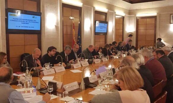 Reunión extraordinaria del pleno del Consejo Estatal de las Personas Mayores