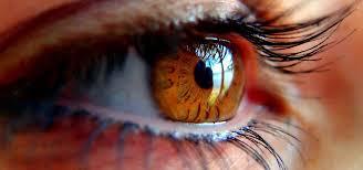 En 2040 más de 110 millones de personas sufrirán glaucoma en todo el mundo