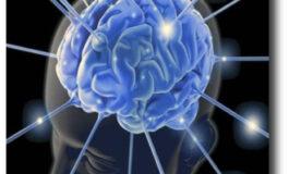 El alzhéimer supone entre el 60 y 70 por ciento de todos los casos de demencia