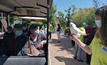 Primera salida grupal en pandemia de mayores residentes al zoo de Madrid